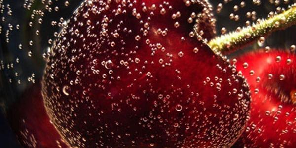 Euro Fruits